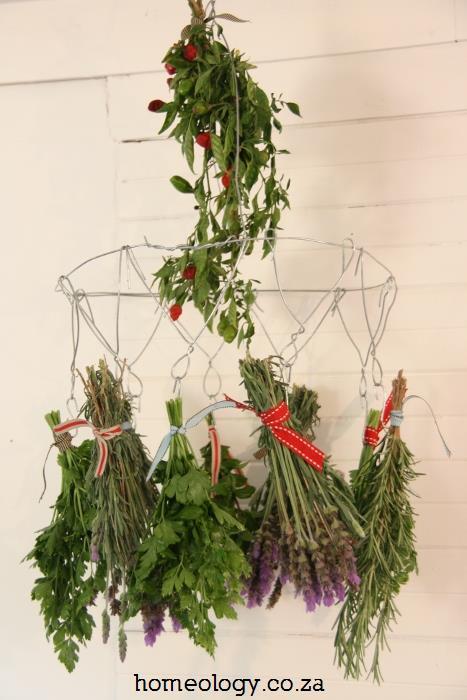 DIY Herby Hanger